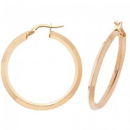 Just Gold Earrings -9Ct Earrings, ER875